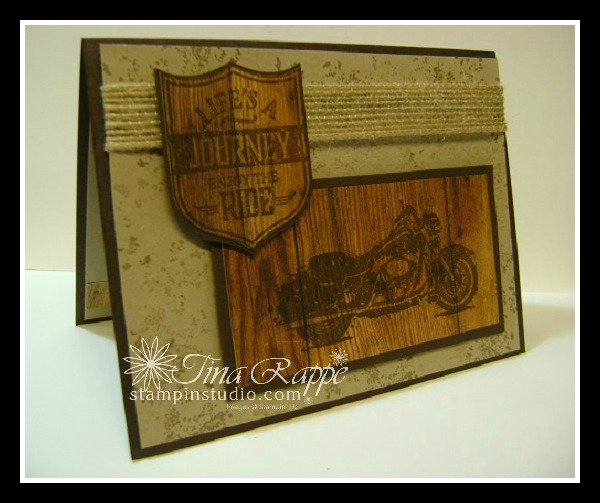 Stampin' Up! Wood Textures Designer Series Paper, One Wild Ride stamp set, Stampin' Studio