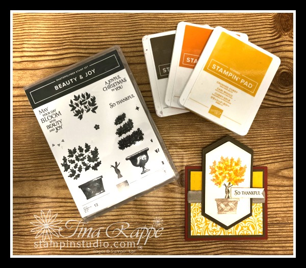 Stampin' Up! Beauty & Joy stamp set, Fun Fold, Stampin' Studio