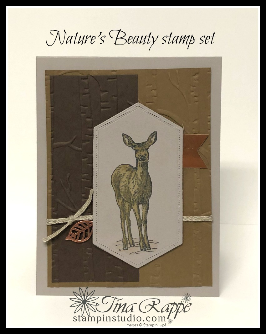 Stampin' Up! Nature's Beauty stamp set, Crackle stamp, Stampin Studio