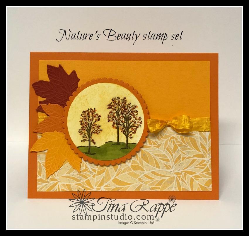 Stampin' Up! Nature's Beauty stamp set, Crackle stamp, Stampin Studio