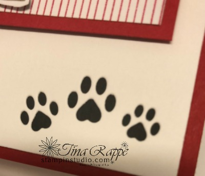 Stampin' Up! Playful Pets Suite, Making the most of the Pampered Pets Designer Series Paper,Pampered Pets Bundle, Stampin' Studio